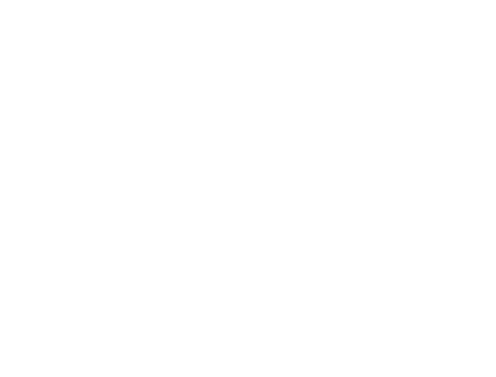 Vesna Design Studio
